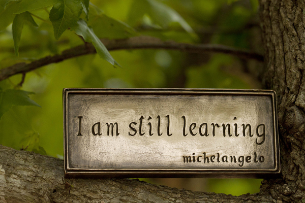 Learning-MickelAngelo